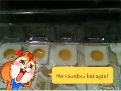 2 Plastik Es Mambo Untuk Mencetak Bagian Kuning Puding Telor Ceplok